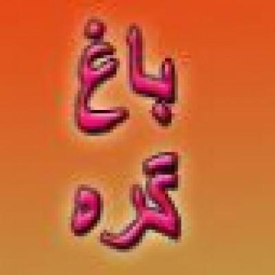 صنایع دستی باغ گره (نمایندگی فرش دارکوب) در تهران